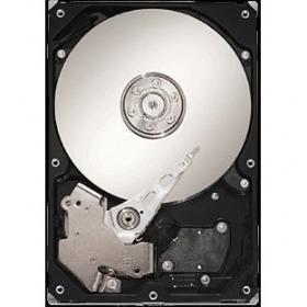 ST3160215ACE [160GB U100 7200]