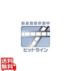 ポラロイド カラーロゴ ブラック Tシャツ /L 写真1