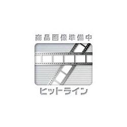 天ぷら入 252用 敷網(465×263) 業務用 写真1