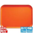 カムトレー(FRP)1014 シトラスオレンジ