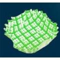 ココ・ケース(500枚入)正角 緑