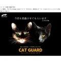 超音波式猫忌避器 キャットガード (猫用) 写真2
