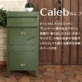 ラージスタンドポスト【Caleb】 写真3